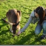 オーストラリア ワーキングホリデー(ゼロホリ) 体験談(伊藤さん)