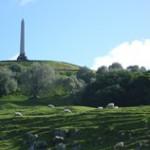 私のおすすめスポット「One tree Hill」 in ニュージーランド