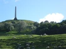 Cornwall Park05